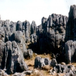 China - Kunming - Shilin Stone Forest - The stones tower ten metres up in the air.