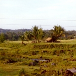 Philippines - Mayon - Rural area in Southern Luzon
