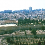 Israel / Palestine - Jerusalem Old Town - View from the Mount of Olives towards the Al-Aqsa Mosque and Dome of the Rock on the Temple Mount
