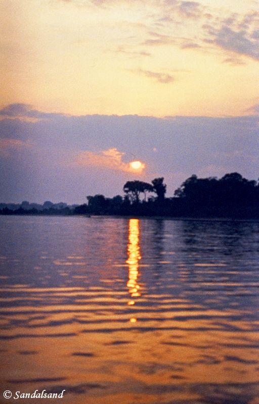 Brazil - Amazonas safari - Sunset