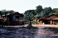 Brazil - Amazonas safari
