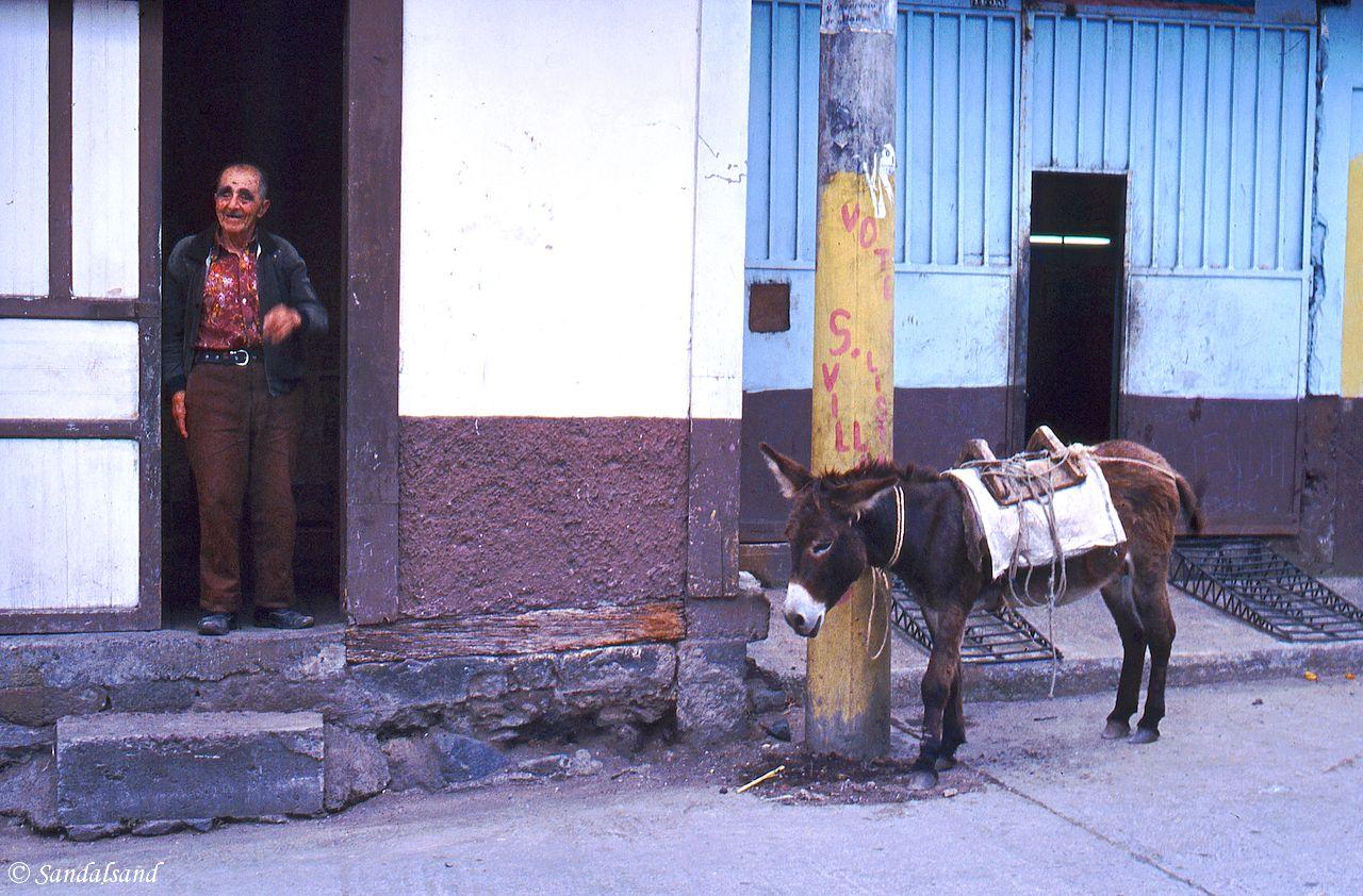 Ecuador - Man and donkey in Baños
