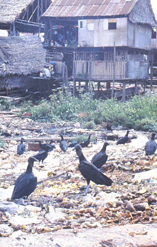 Peru - Iquitos - Belén