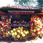 Chile - Pucon - Flowers made of wood