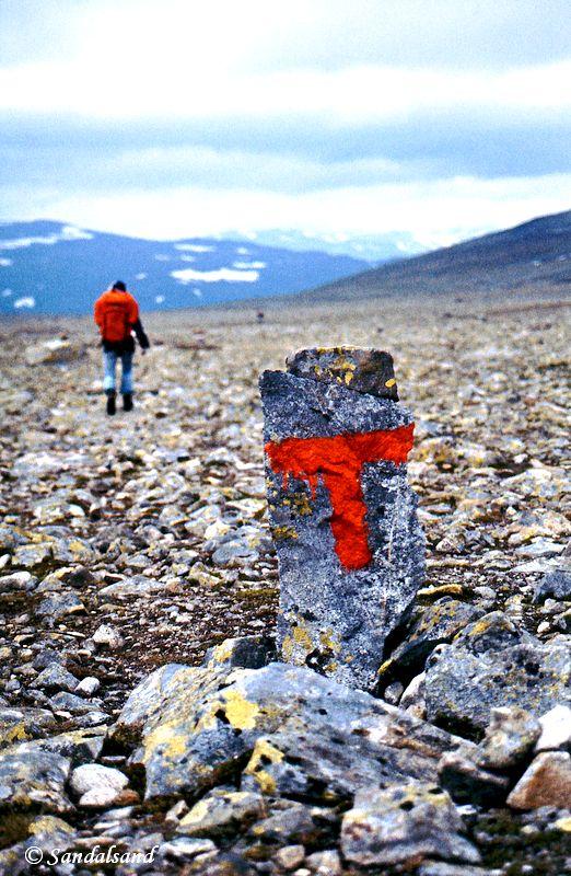 Oppland - Jotunheimen - T på steinørken over Skautflya