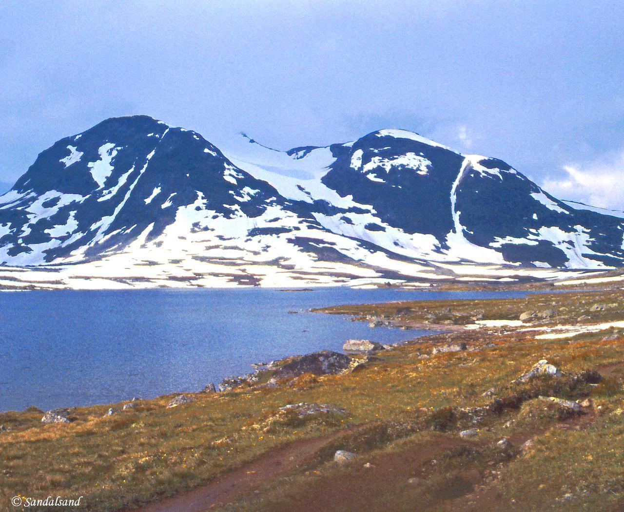 Oppland - Jotunheimen - Fra snø mot grad ved Langvatnet