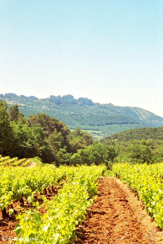 France - Provence - Les Dentelles