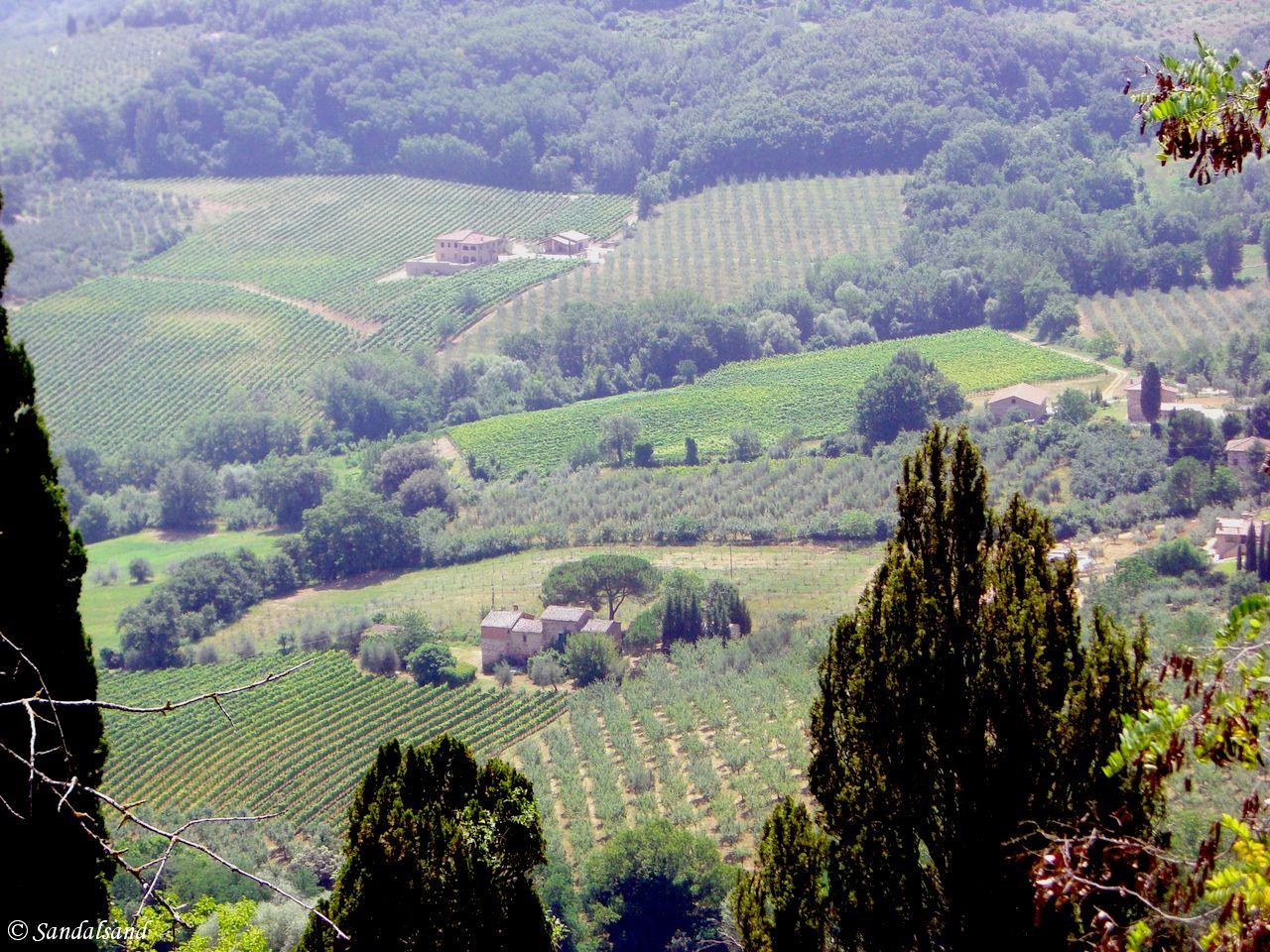 Italy - Toscana - Montepulciano