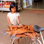 Cambodia - The road from Siem Reap to Phnom Penh