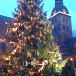 Latvia - Riga - Christmas tree on Cathedral Square