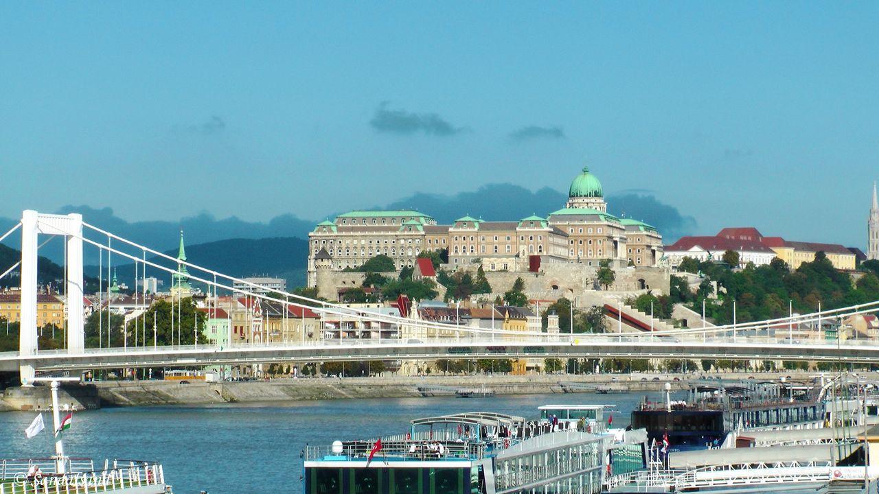 Hungary - Budapest - Erzsébet bridge - Castle