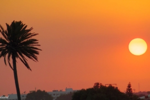 2014 Cyprus