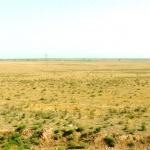 Uzbekistan - The flat plains south of Samarkand