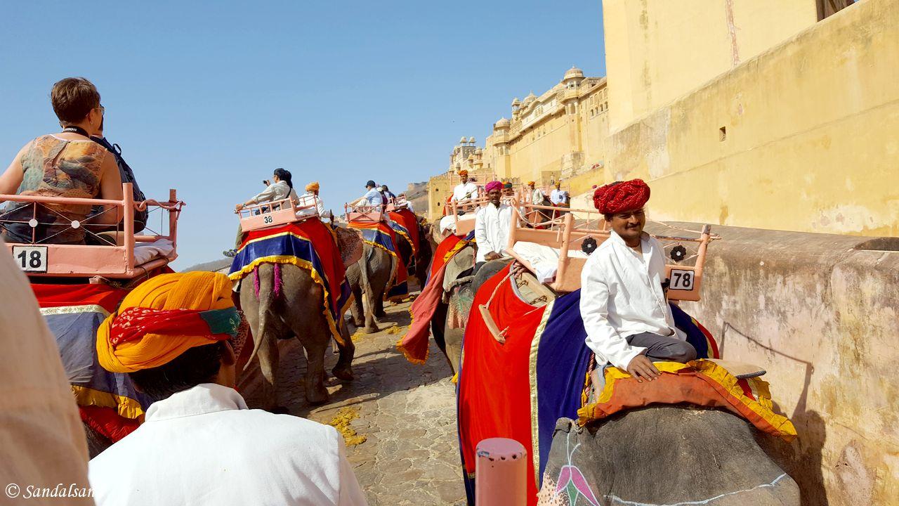 India - Jaipur - Amer Fort