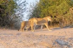 2018 Botswana