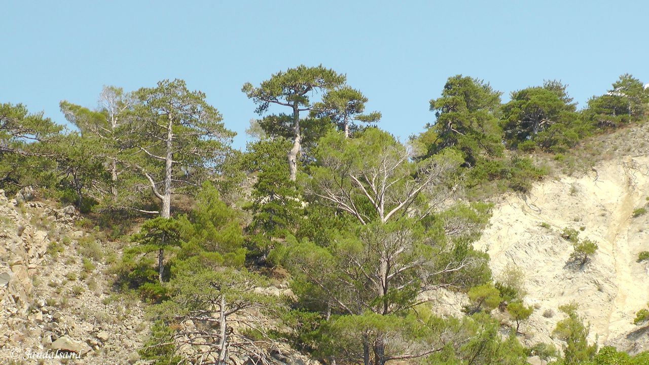 A day trip into the Troodos mountains of Cyprus