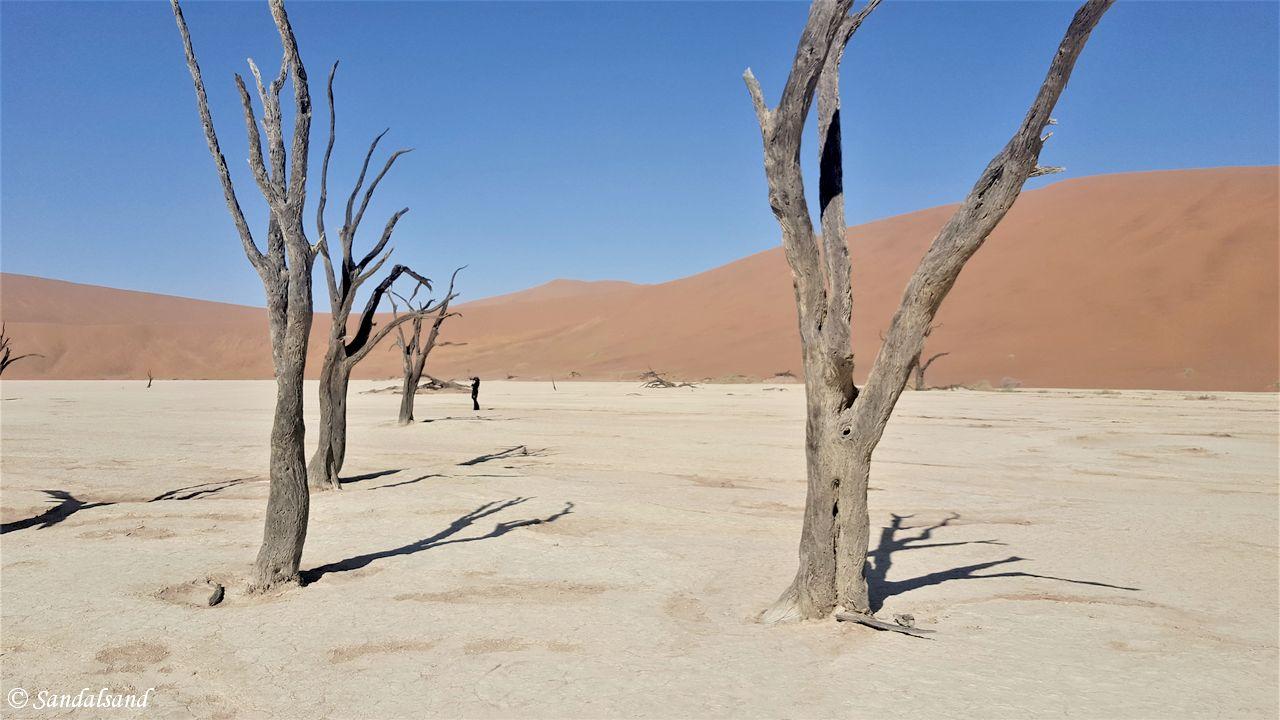 PICS – Namibia