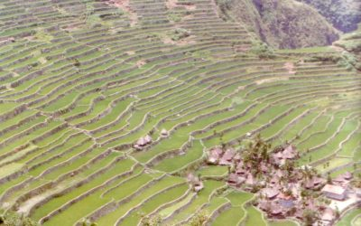 World Heritage #0722 – Rice Terraces of the Philippine Cordilleras