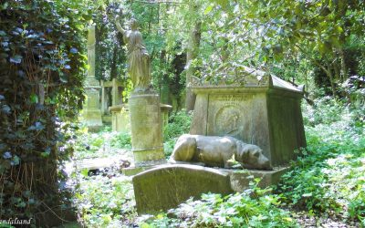 Religious Buildings (9) After death – Cemeteries as final resting places