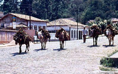 World Heritage #0124 – Historic Town of Ouro Preto