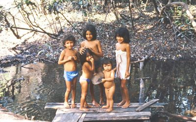 World Heritage #0998 – Central Amazon Conservation Complex