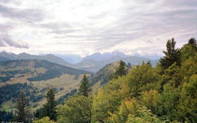 PICS – Austria