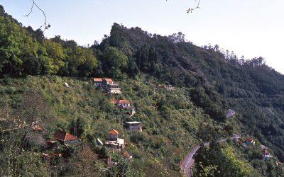 World Heritage #0934 – Laurisilva of Madeira
