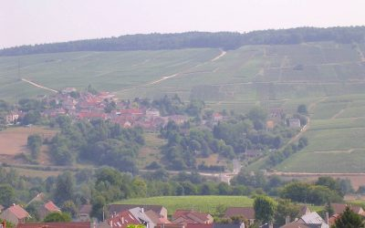 VIDEO – France – Champagne