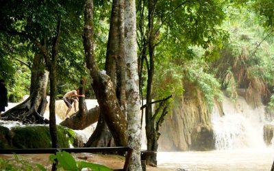 VIDEO – Laos (4) Tat Kuang Si