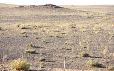 VIDEO – Mongolia – The Gobi desert