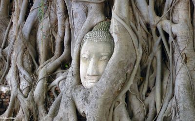 World Heritage #0576 – Historic City of Ayutthaya