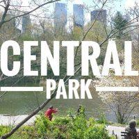 VIDEO – USA – Central Park